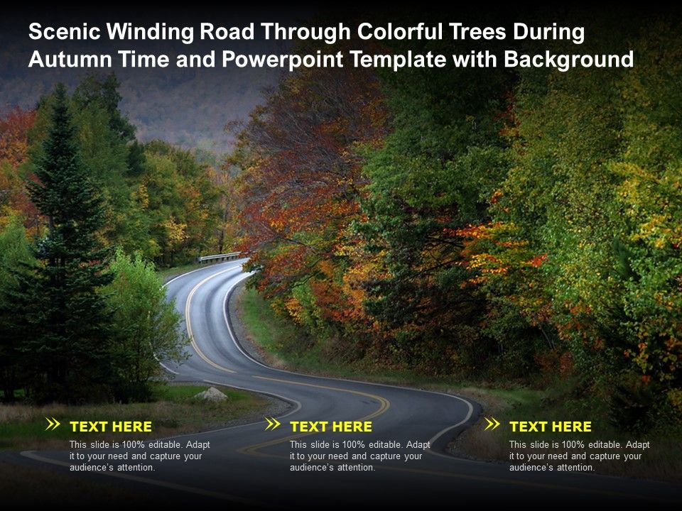 Scenic Winding Road Through Colorful Trees During Autumn Time And Template With Background