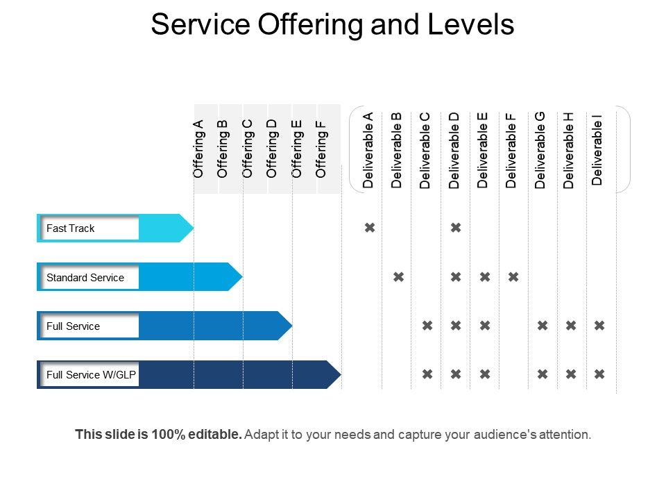 service offering and levels powerpoint slide designs powerpoint