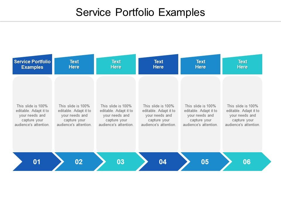 Service Portfolio Examples Ppt Powerpoint Presentation Pictures Examples Cpb