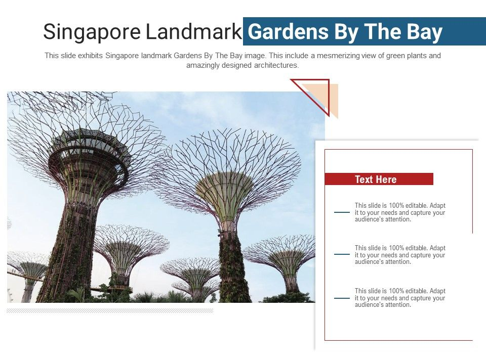 Singapore Landmark Gardens By The Bay Powerpoint Presentation Ppt Template