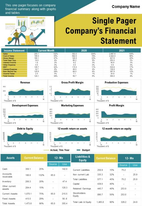 Single Pager Companys Financial Statement Presentation Report Infographic PPT PDF Document