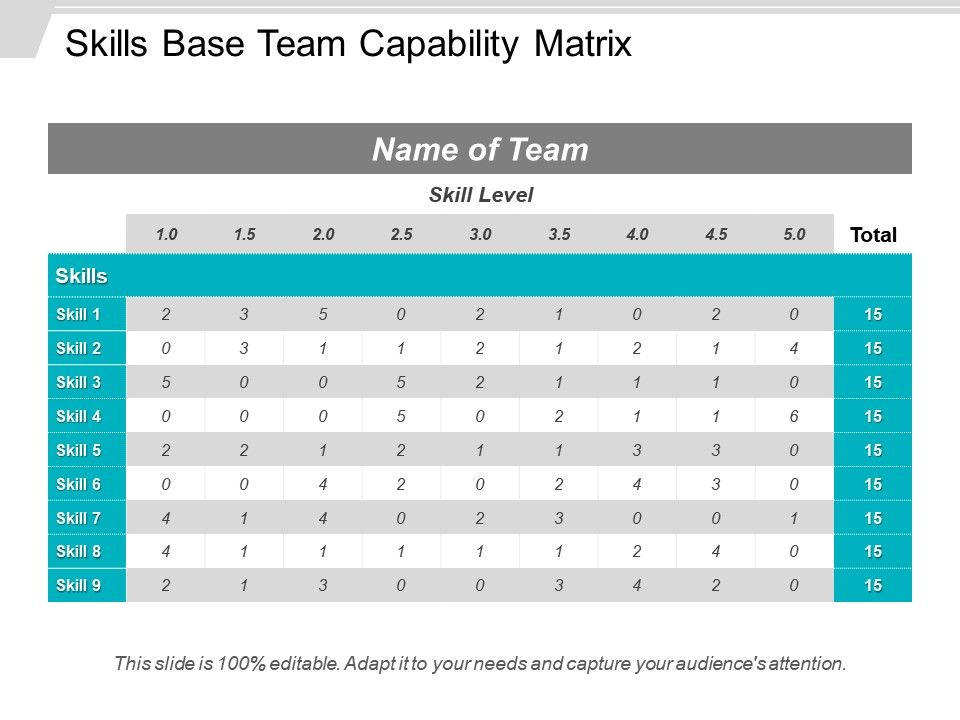 skills base team capability matrix powerpoint show powerpoint