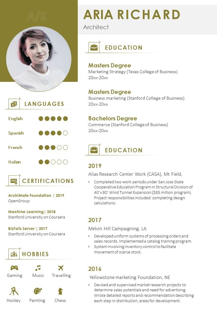 Professional Resume Summary Example Format Powerpoint Shapes