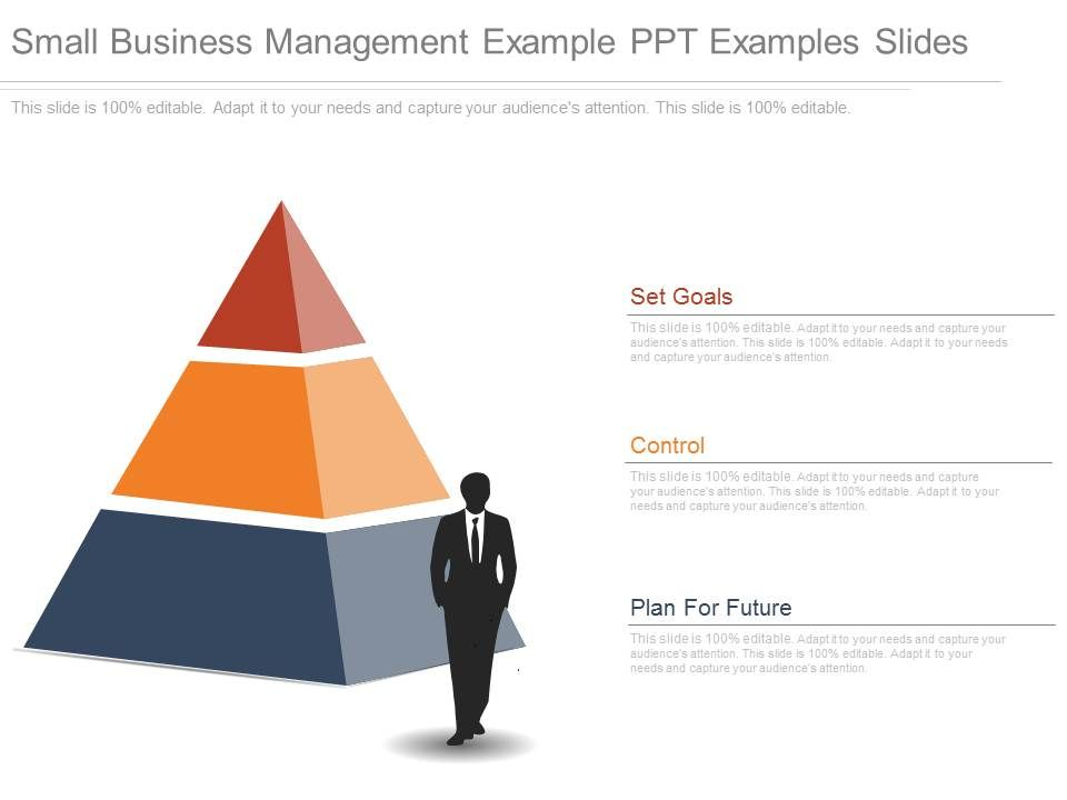 Small Business Management Example Ppt Examples Slides | PowerPoint