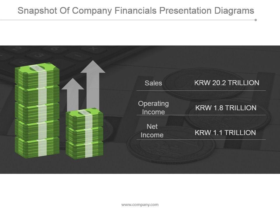 snapshot_of_company_financials_presentation_diagrams_Slide01