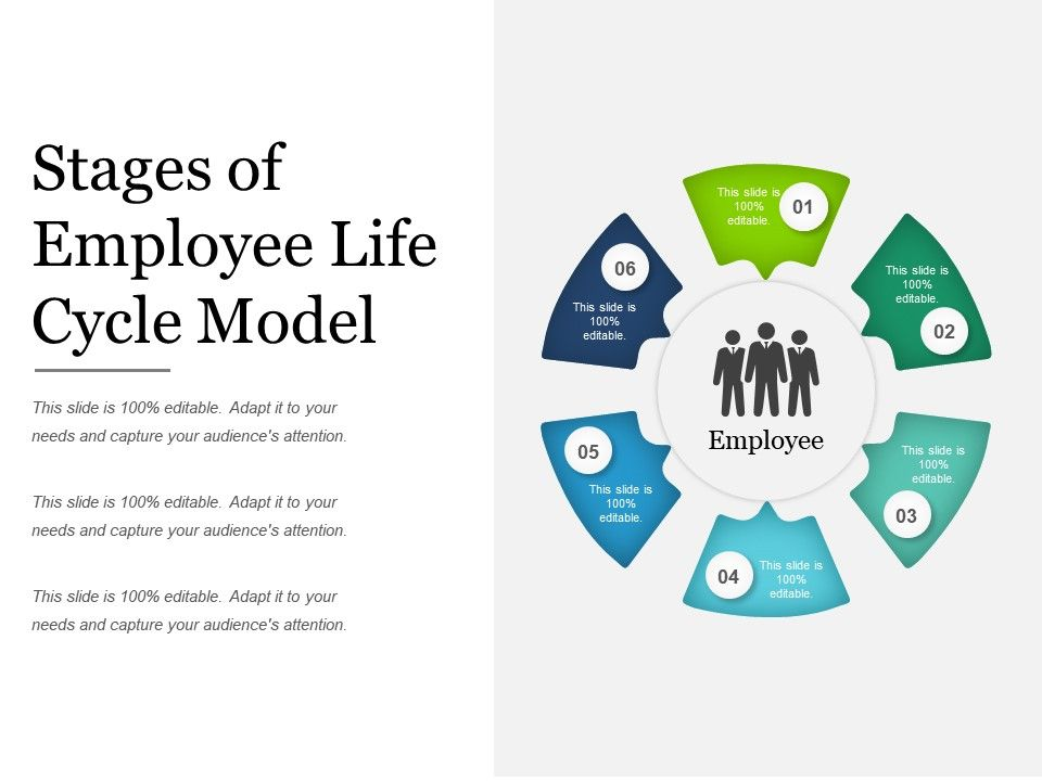Stages Of Employee Life Cycle Model Ppt Templates