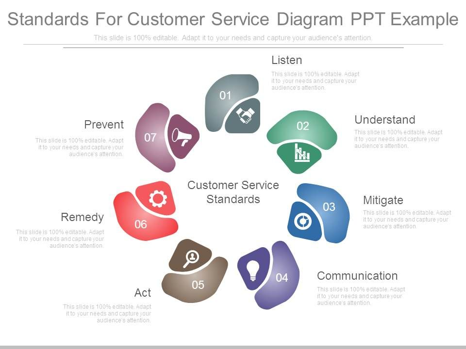 Standards For Customer Service Diagram Ppt Example