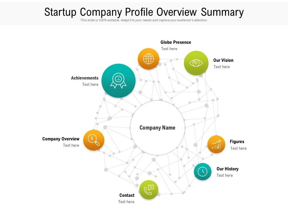 Startup Company Profile Overview Summary
