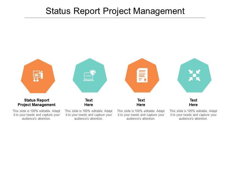 Status Report Project Management Ppt Powerpoint Presentation Summary Inspiration Cpb