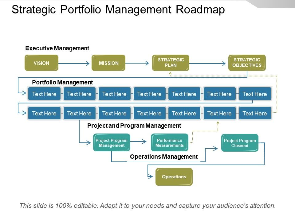 strategic_portfolio_management_roadmap_powerpoint_show_slide01 strategic_portfolio_management_roadmap_powerpoint_show_slide02