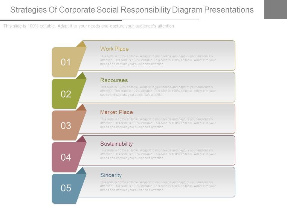 strategies_of_corporate_social_responsibility_diagram_presentations_Slide01