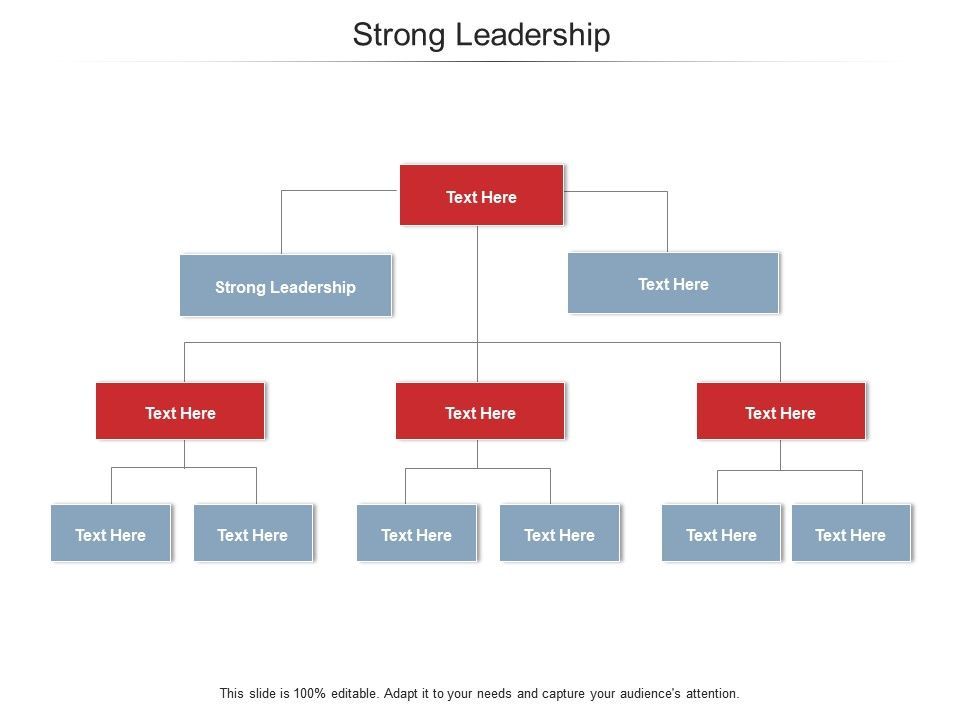 Strong Leadership Ppt Powerpoint Presentation Styles Themes Cpb