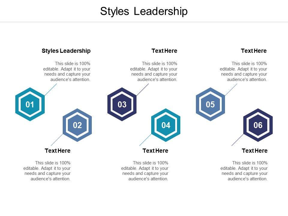 Styles Leadership Ppt Powerpoint Presentation Summary Example Cpb