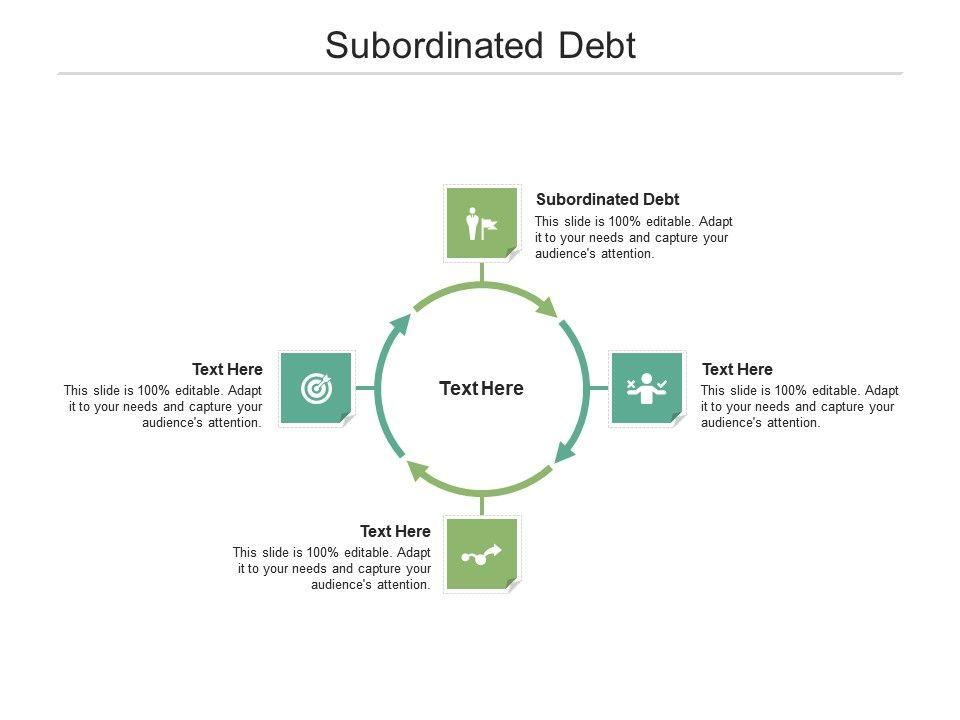Subordinated Debt Ppt Powerpoint Presentation Show Demonstration Cpb