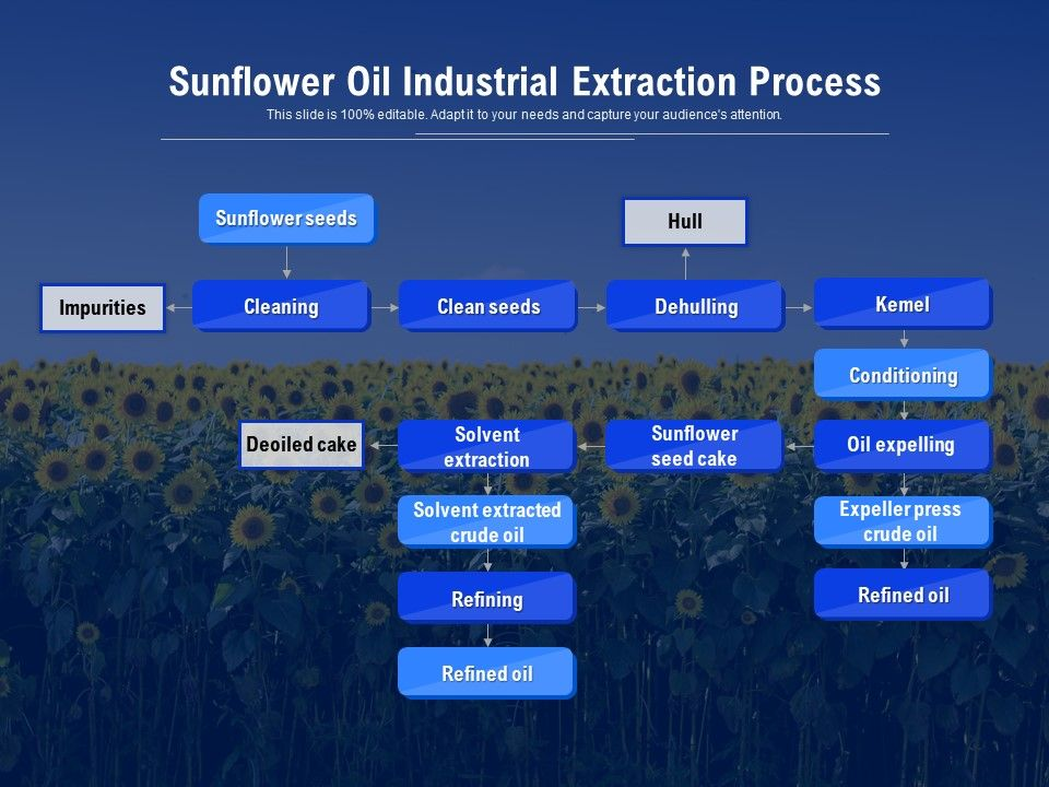 Sunflower Oil Industrial Extraction Process