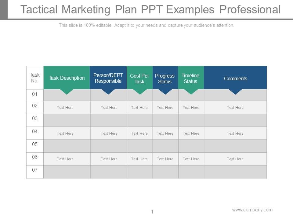 tactical marketing plan ppt examples professional template