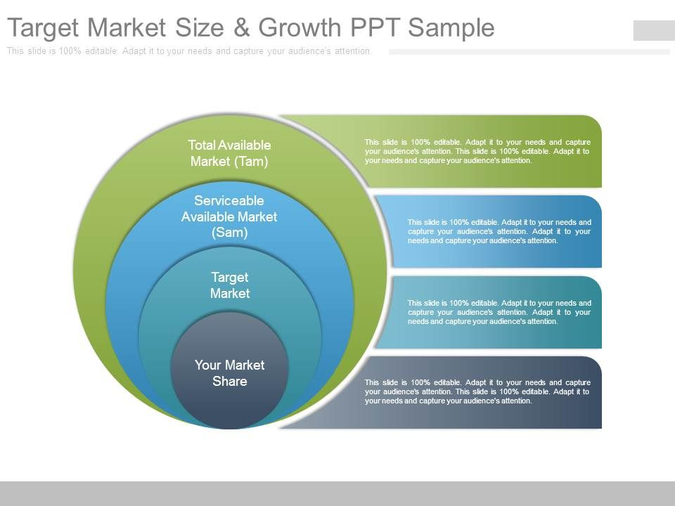 target market size and growth ppt sample powerpoint templates