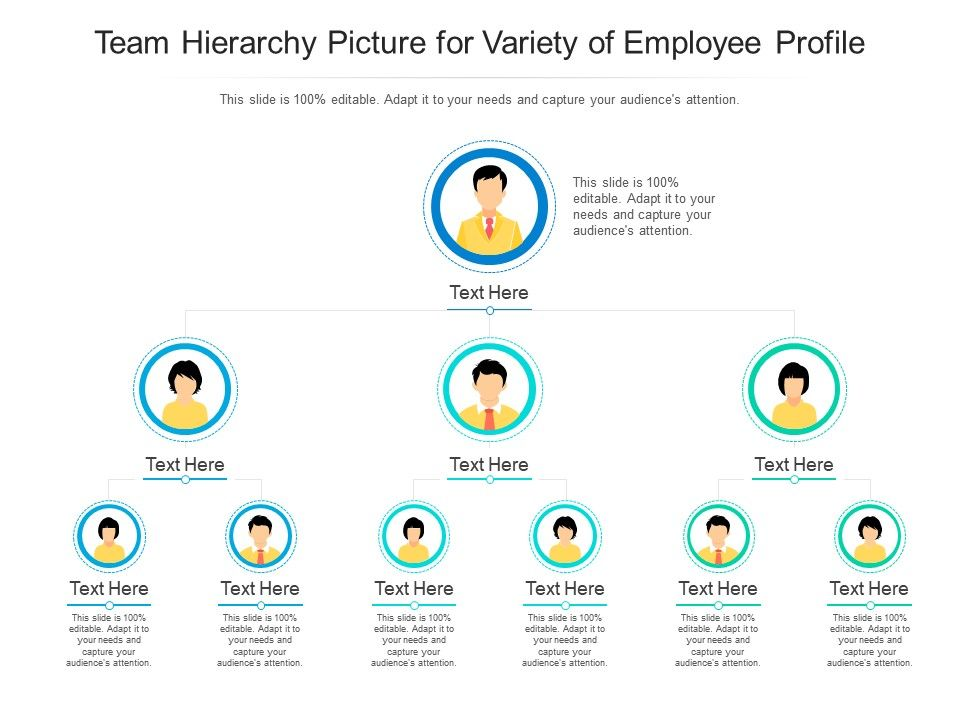 Team Hierarchy Picture For Variety Of Employee Profile Infographic Template