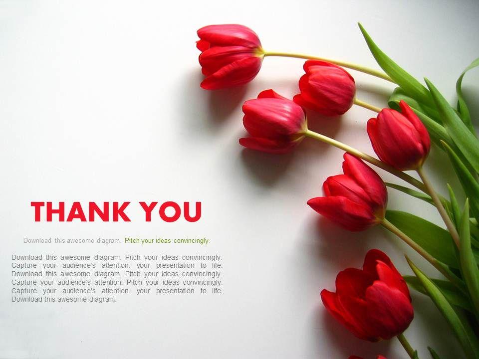professional marketing presentation showing thank you