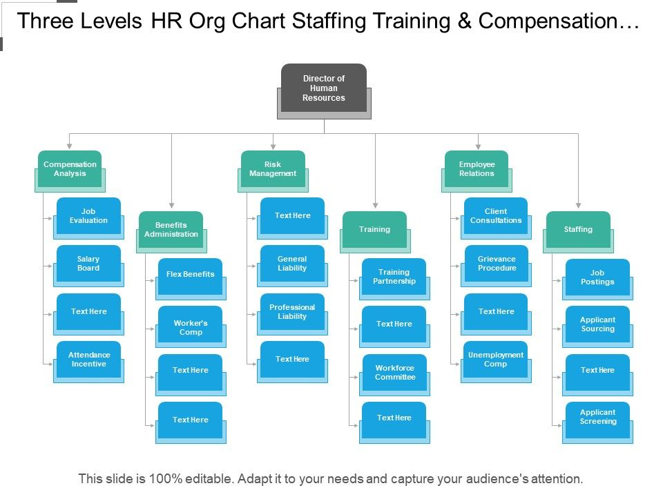 three_levels_hr_org_chart_staffing_training_and_compensation_analysis_Slide01