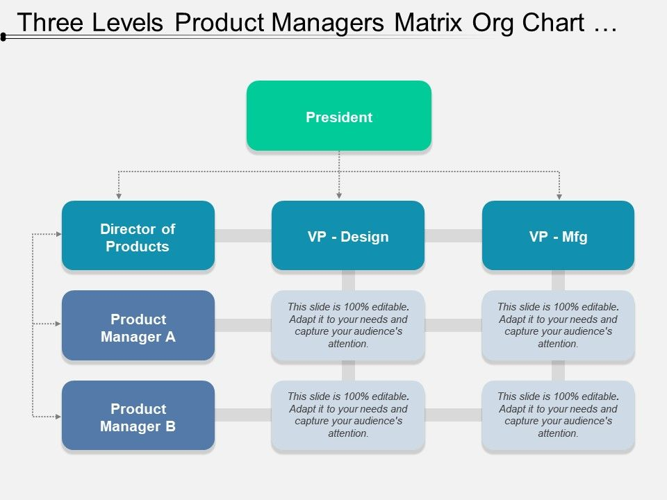 three_levels_product_managers_matrix_org_chart_template_Slide01