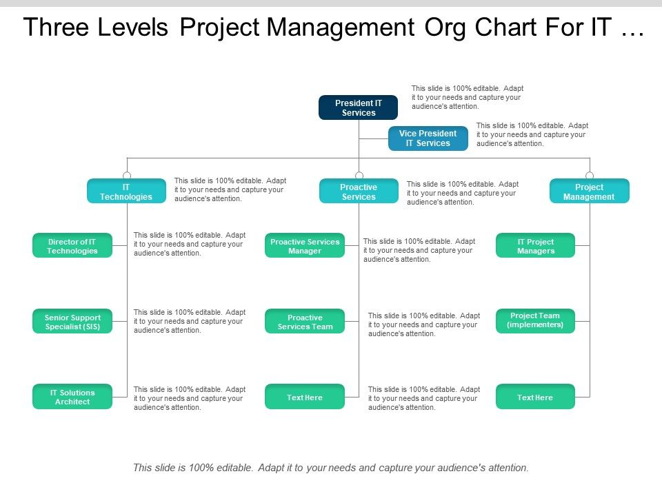 three_levels_project_management_org_chart_for_it_company_Slide01