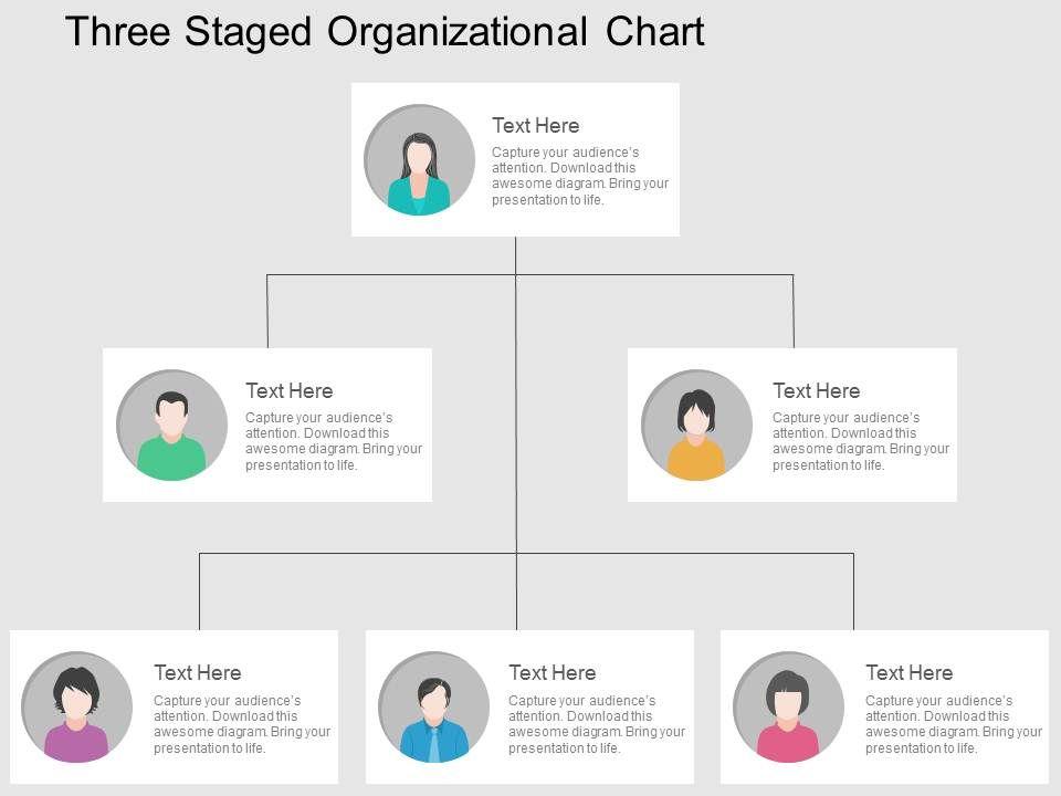 three_staged_organizational_chart_flat_powerpoint_design_Slide01