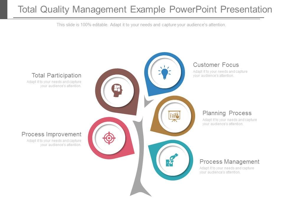 Total Quality Management Example Powerpoint Presentation Powerpoint Presentation Pictures Ppt Slide Template Ppt Examples Professional