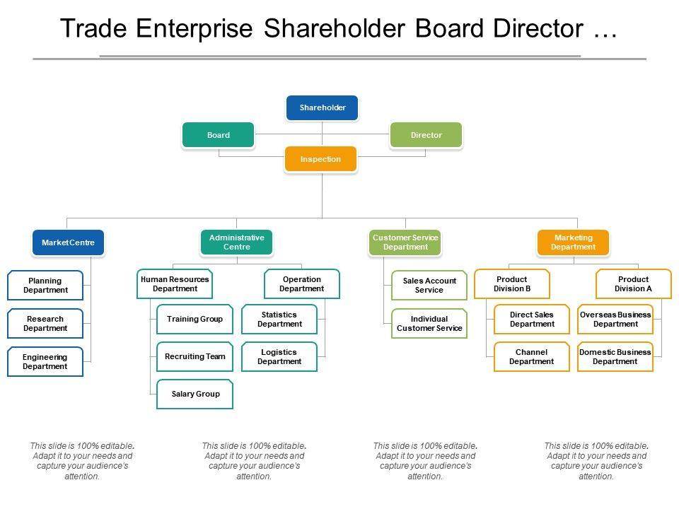 trade_enterprise_shareholder_board_director_org_chart_Slide01