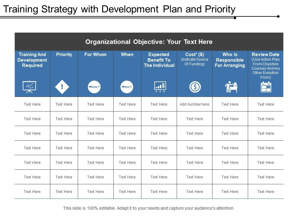 training_strategy_with_development_plan_and_priority_Slide01