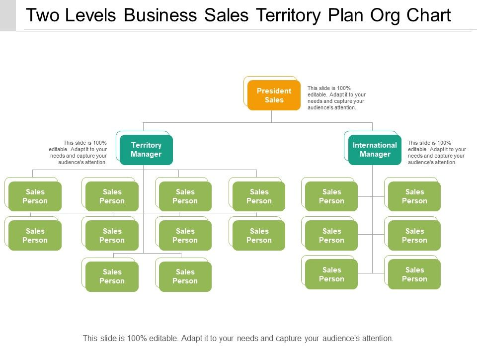 two_levels_business_sales_territory_plan_org_chart_Slide01