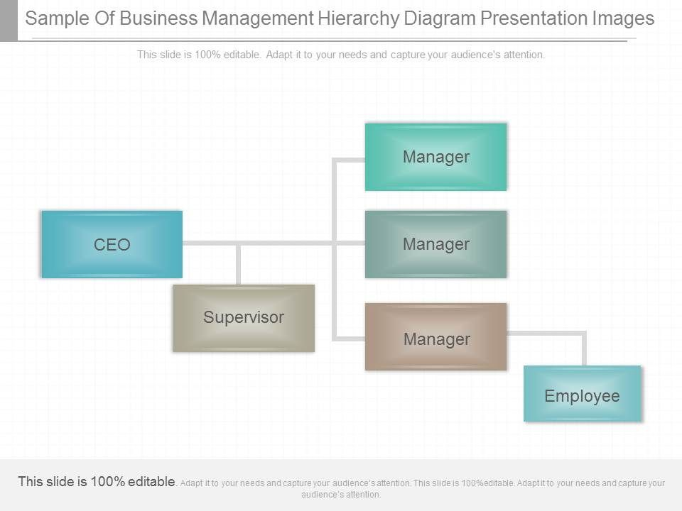 unique_sample_of_business_management_hierarchy_diagram_presentation_images_Slide01 unique sample of business management hierarchy diagram presentation