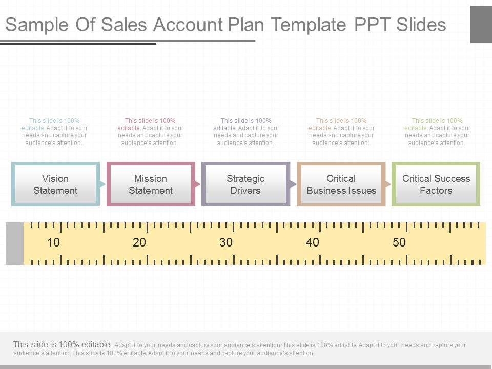 View Sample Of Sales Account Plan Template Ppt Slides | Powerpoint