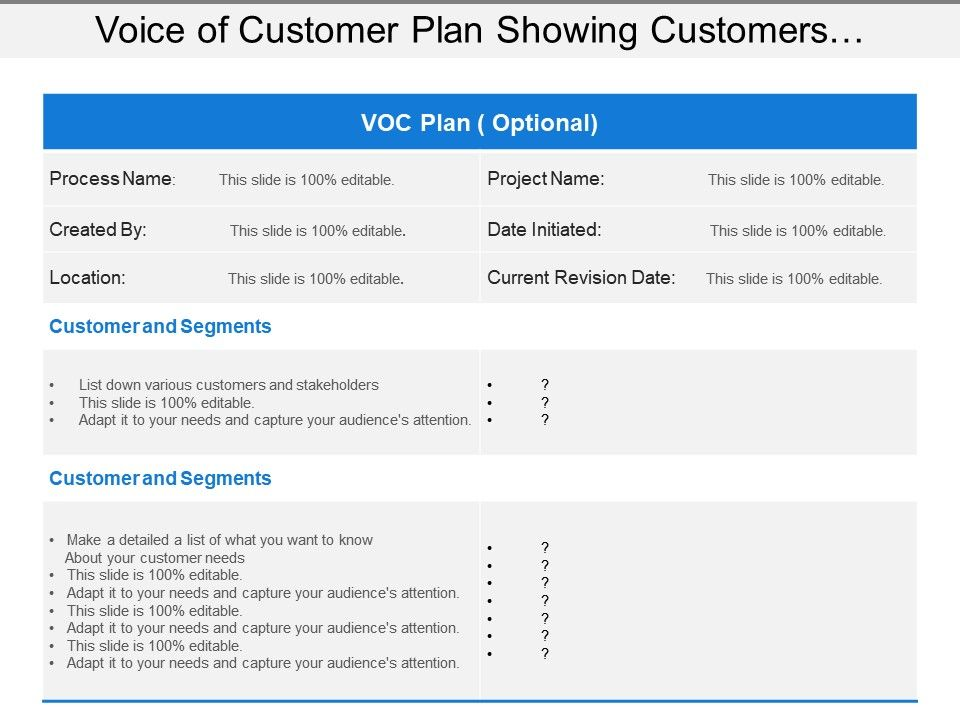 voice_of_customer_plan_showing_customers_and_segments_Slide01