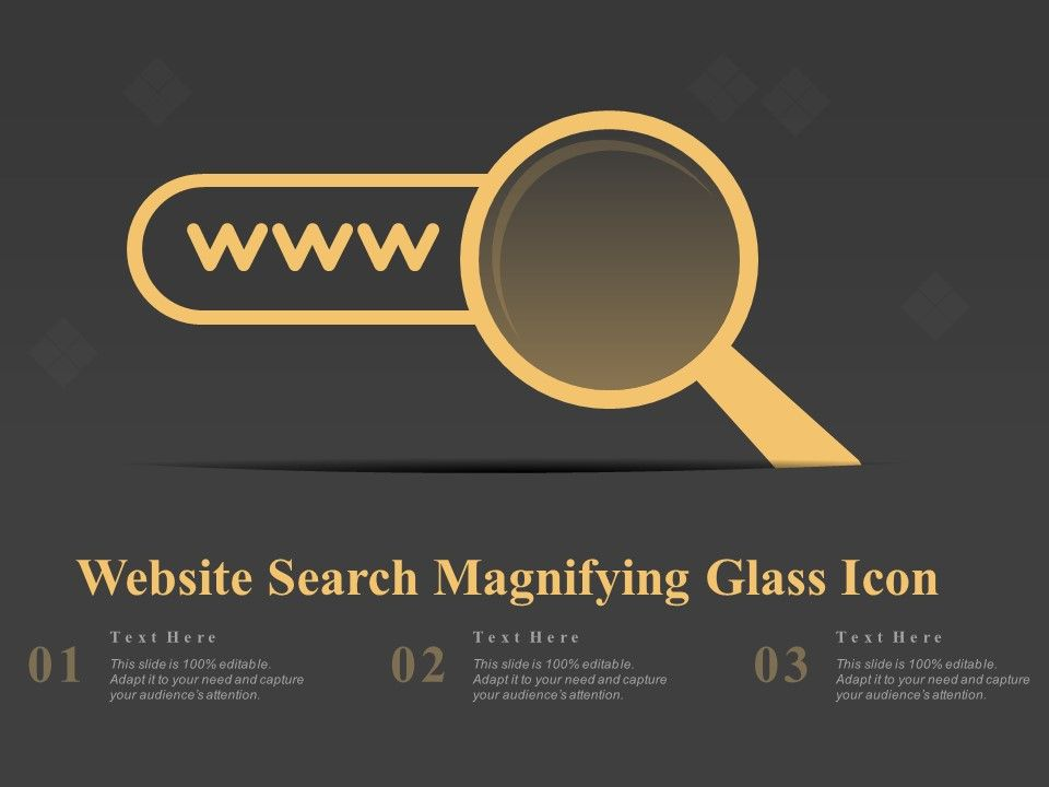 Website Search Magnifying Glass Icon