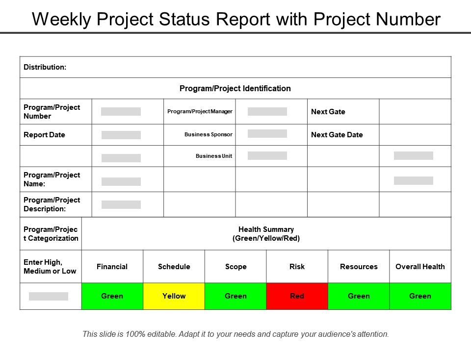 weekly_project_status_report_with_project_number_Slide01