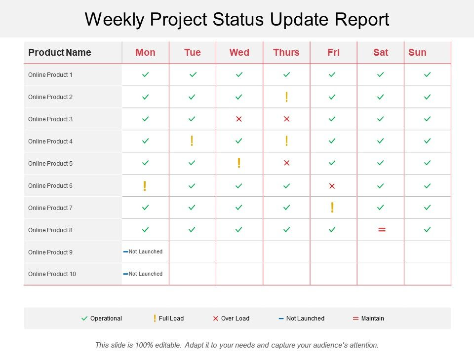 Weekly Project Status Update Report