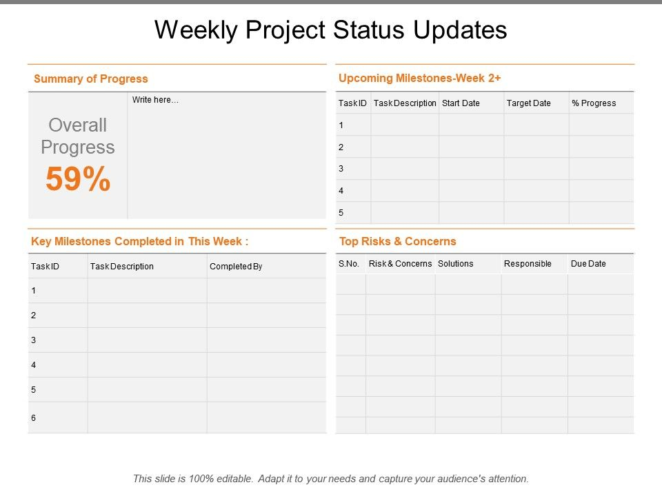 Weekly Project Status Updates