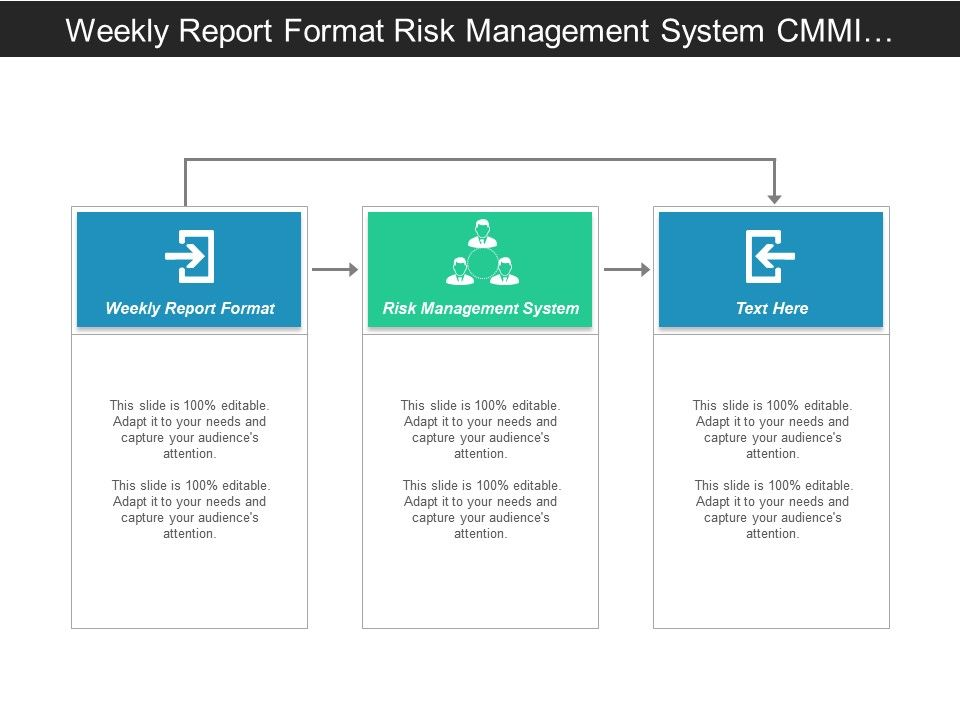 weekly report format risk management system cmmi model cpb