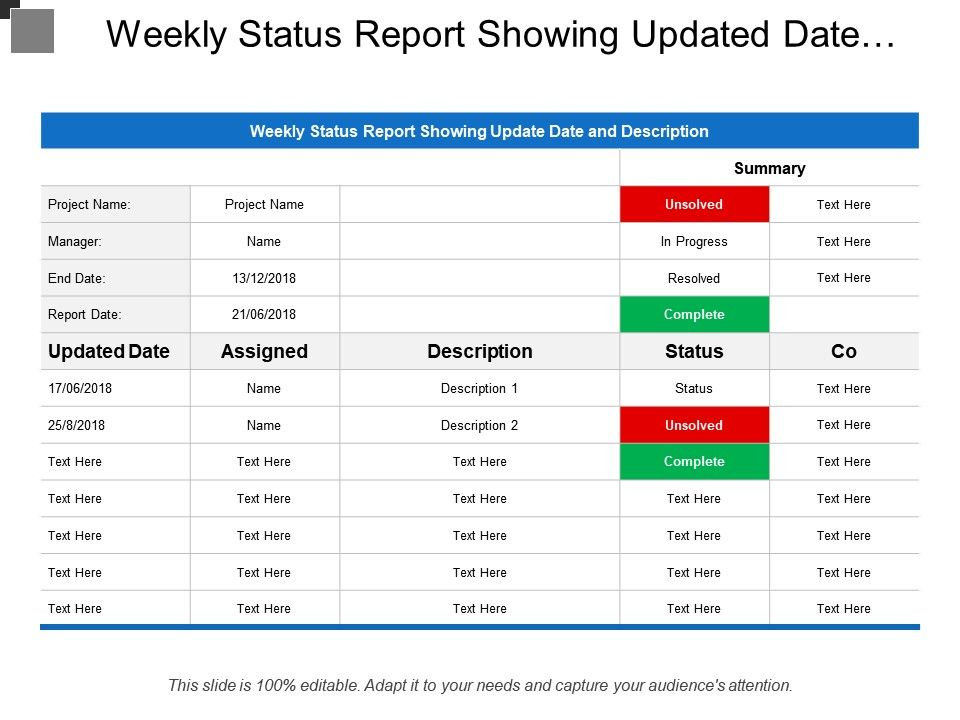 weekly status report showing updated date and description