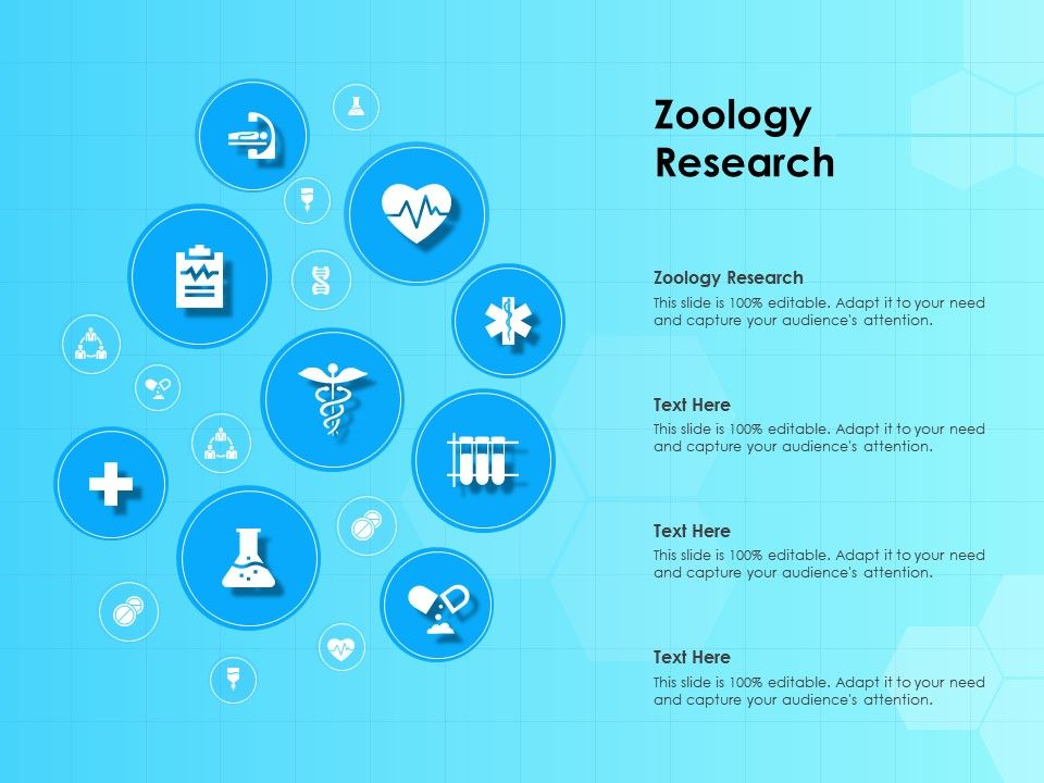 Zoology Research Ppt Powerpoint Presentation Template Graphic Example Slide Templates Dissertation Ideas