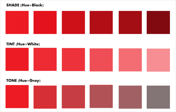 Shades, Tint and Tone- Understanding colors