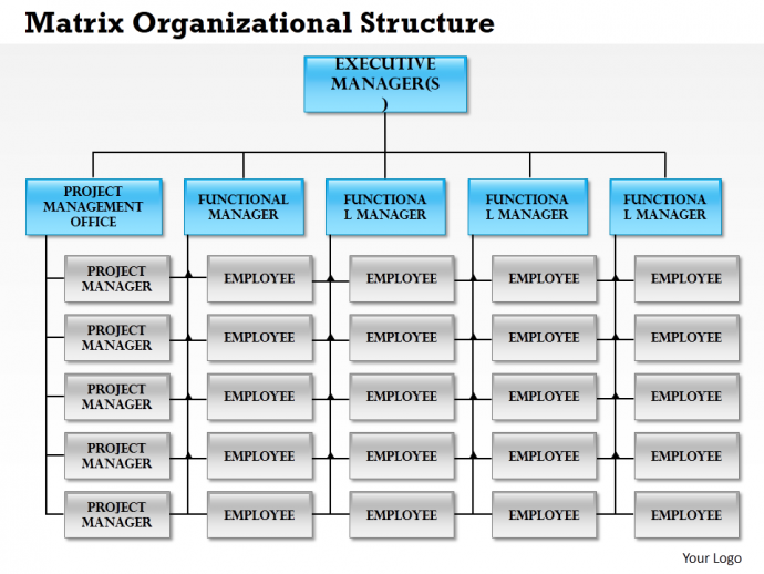 Matrix organizational structure pdf merge