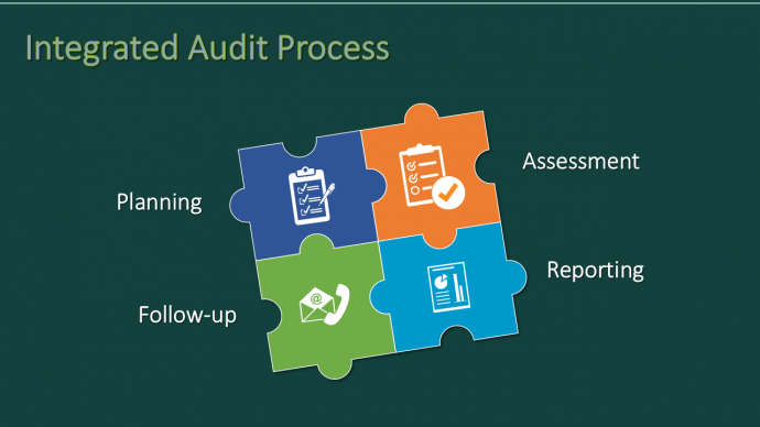 Integrated Audit Process