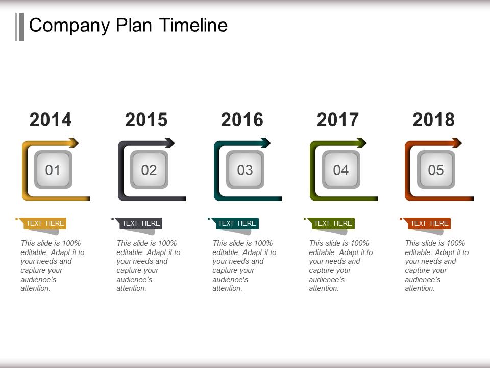 Company Plan Timeline