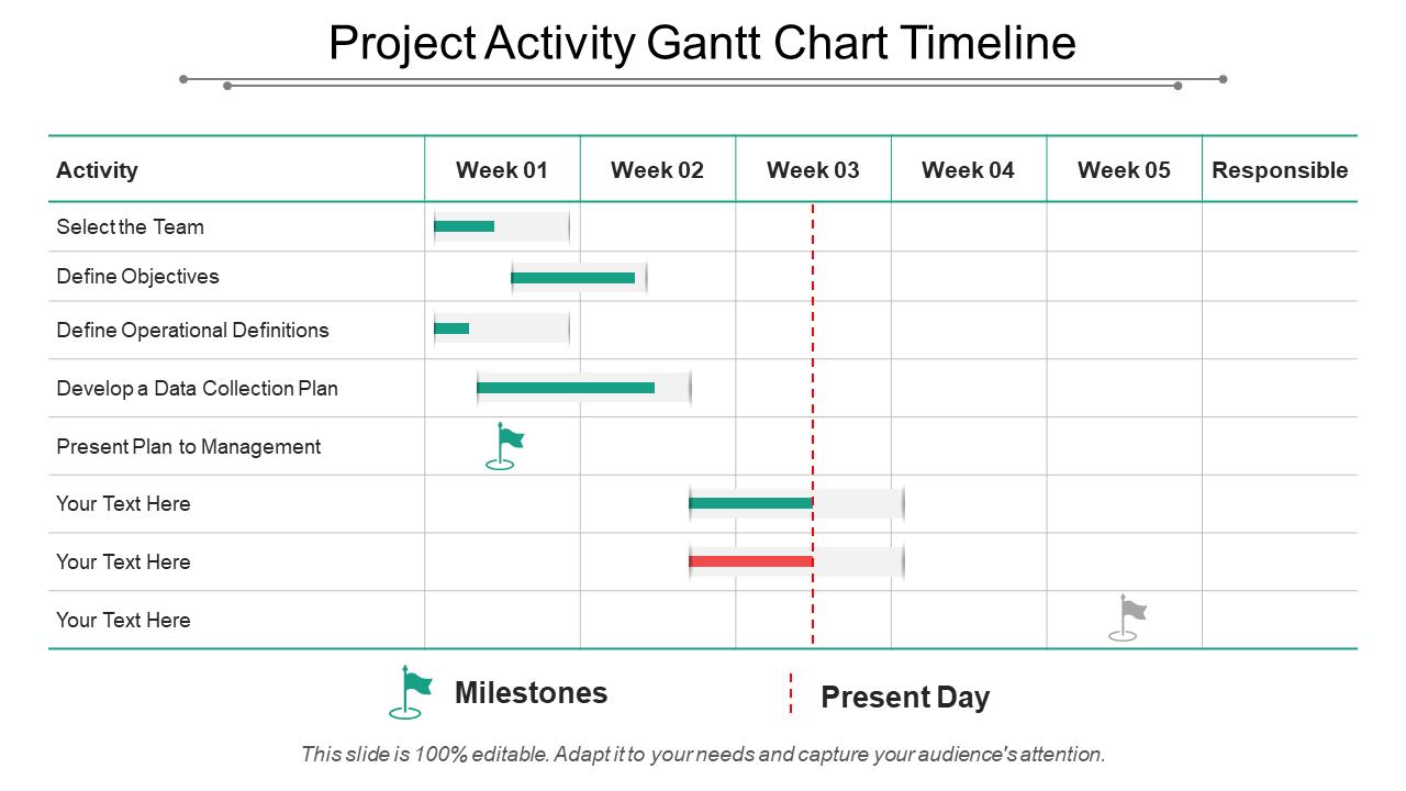 Project Activity Gantt Chart Timeline