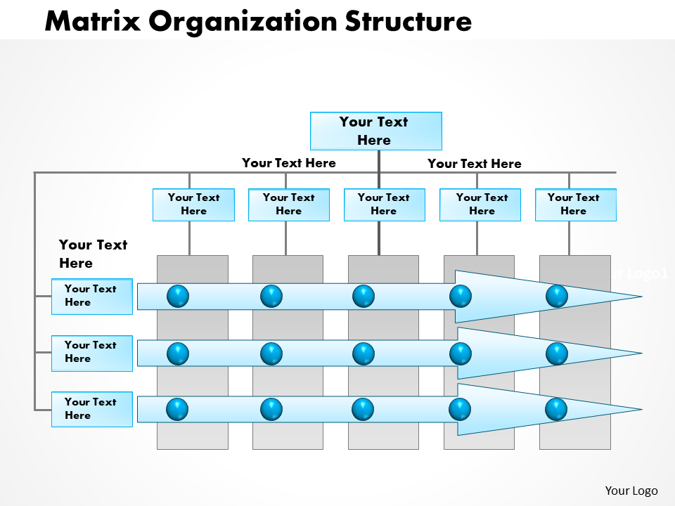 0514 Matrix Organization Project Management PowerPoint Presentation