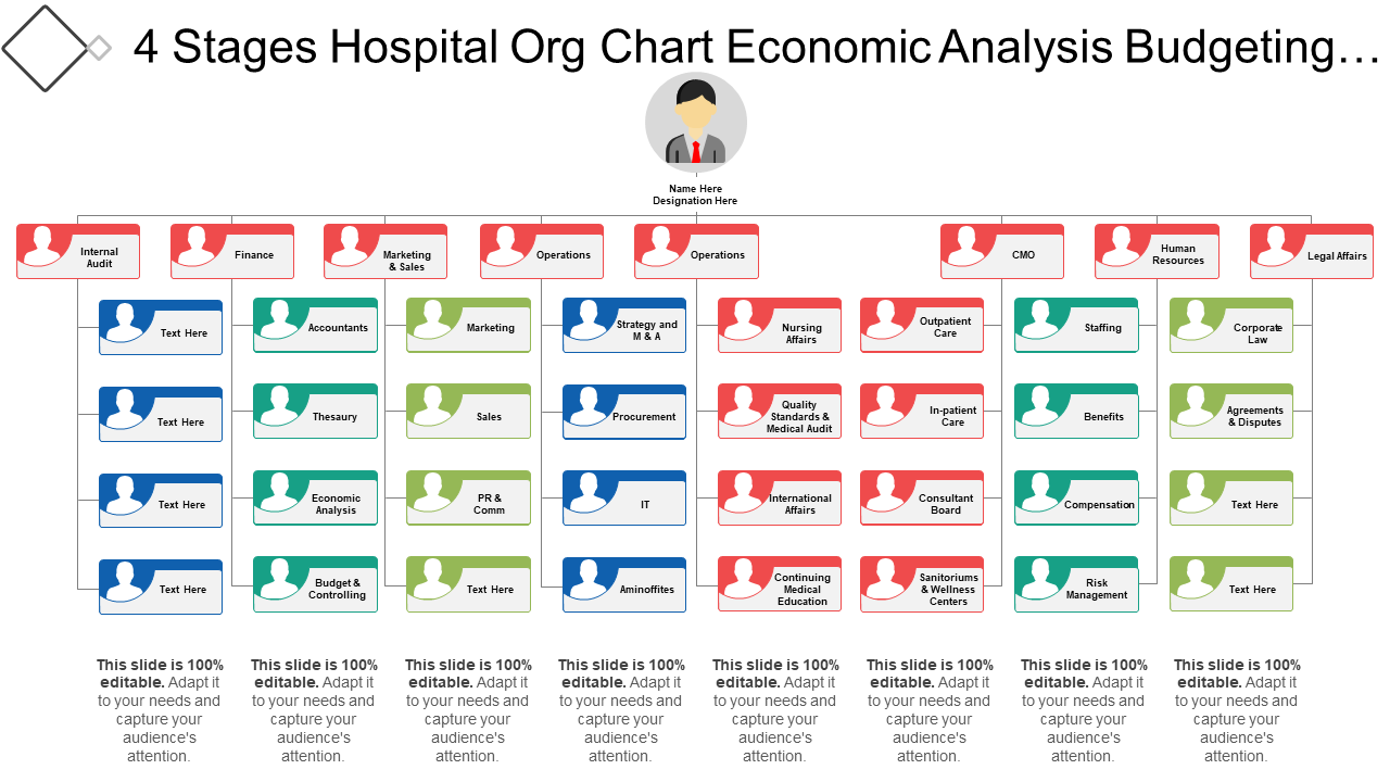 4 Stages Hospital Org Chart Economic Analysis Budgeting And Controlling