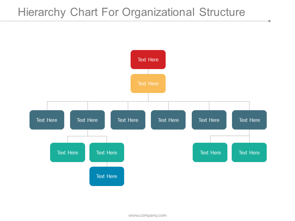 Hierarchy Chart For Organizational Structure PPT Inspiration