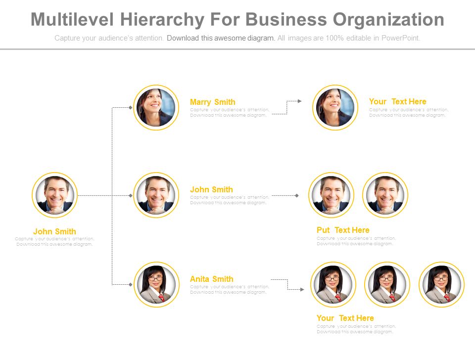 Multilevel Hierarchy For Business Organization PowerPoint Slides
